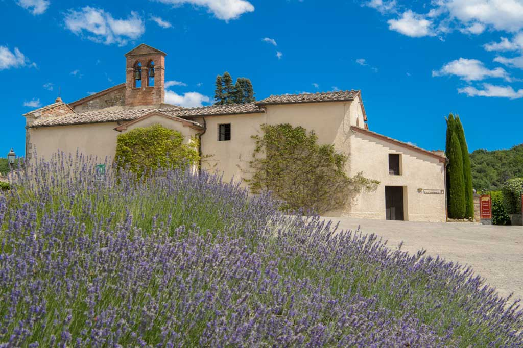 La Bagnaia Golf & Spa Resort Siena, Curio Collection by Hilton da il benvenuto all'autunno con la vendemmia_4