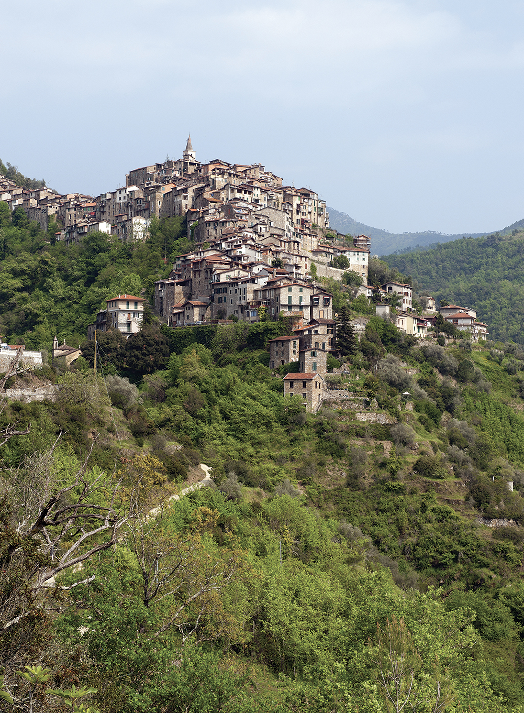 Apricale_3